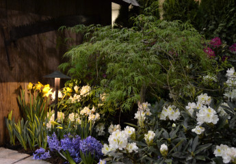 Lighting Display, Home & Garden Show
