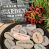 Oakland INSIDE & OUT - Born to Garden