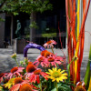 Downtown Streetscapes - Fall