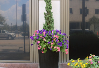 Downtown Streetscapes - Summer