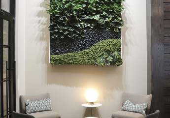 Penzone green wall